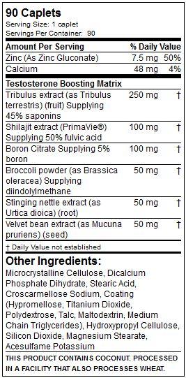 suplemen fact test hd